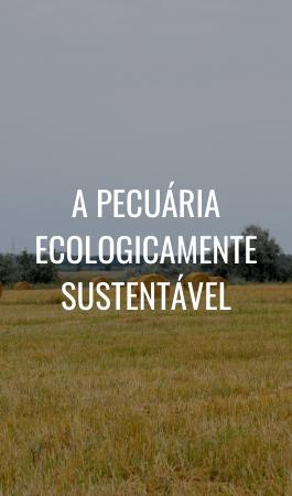 PECUÁRIA SUSTENTÁVEL